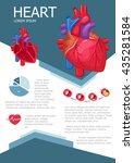 human heart infographic poster... | Shutterstock .eps vector #435281584