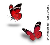 beautiful red butterfly flying... | Shutterstock . vector #435339358