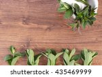 fresh natural green mint with... | Shutterstock . vector #435469999