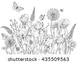 Stock vector hand drawn line illustration with iris wildflowers and insects black and white doodle wild 435509563