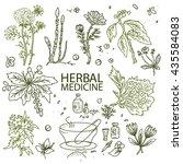 herbal medicine doodle hand... | Shutterstock .eps vector #435584083