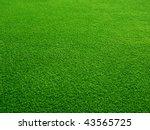 green grass background | Shutterstock . vector #43565725