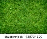 green grass texture for... | Shutterstock . vector #435734920