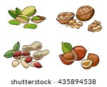 kinds of nuts. isolated on a... | Shutterstock .eps vector #435894538
