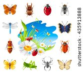 Insect And Summer Nature Icon...
