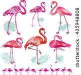 set of pink flamingos | Shutterstock .eps vector #435948808