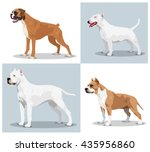image set of dogs  boxer  bull...