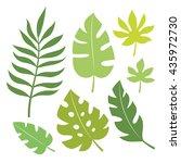 set of tropical leaves vector...   Shutterstock .eps vector #435972730