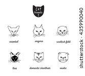 set of cat breeds with names 2. ... | Shutterstock .eps vector #435990040