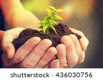 hand and plant | Shutterstock . vector #436030756