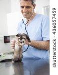 vet examining weasel with... | Shutterstock . vector #436057459