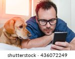 Stock photo man with glasses in blue shirt laying on the bed with the dog and using smart phone 436072249