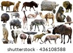 set of different african... | Shutterstock . vector #436108588