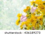 bouquet of wild flowers ...   Shutterstock . vector #436189273