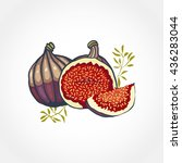 sweet ripe figs isolated on...   Shutterstock .eps vector #436283044