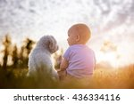 Stock photo little boy and white puppy outdoors in summer 436334116