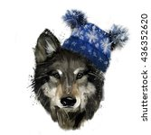 christmas wolf. hand painted... | Shutterstock . vector #436352620