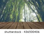 the forest backgrounds with... | Shutterstock . vector #436500406