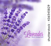 beautiful background with few... | Shutterstock .eps vector #436545829