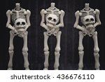 Three Headless Skeletons...
