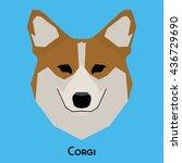 isolated cute corgi on a blue... | Shutterstock .eps vector #436729690