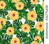 seamless vector hibiscus pattern   Shutterstock .eps vector #436776430