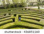 green bushes labyrinth  hedge... | Shutterstock . vector #436851160