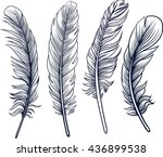 hand drawn feathers set. vector ...