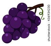 illustrator of grapes | Shutterstock .eps vector #436934230