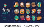 Stock vector cute indian hand drawn owl characters collection of owls vector illustration 436962499