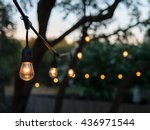 Decorative Outdoor String...