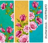 Pink Rose Frames. Vector Set Of ...