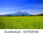 field mustard and mt.bandai | Shutterstock . vector #437005540