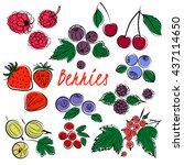 vector set of  color berries...   Shutterstock .eps vector #437114650