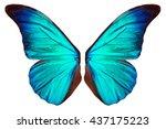 beautiful blue butterfly wings...   Shutterstock . vector #437175223