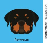 isolated cute rottweiler on a... | Shutterstock .eps vector #437321614
