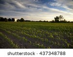 a late afternoon rural scene in ... | Shutterstock . vector #437348788