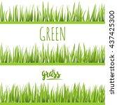 set realistic green grass lawn... | Shutterstock .eps vector #437425300