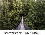 Stock photo suspension bridge in the forest evergreen vancouver nature pacific north west nature vancouver 437448520