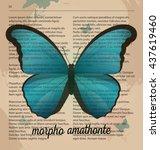 Vector Print Blue Butterfly...