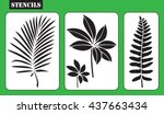 Stencils. Set Of Tropical...