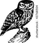 bird | Shutterstock .eps vector #43768504
