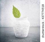 fresh green leaf in old vase ... | Shutterstock . vector #437774518