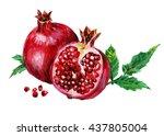 watercolor pomegranate | Shutterstock . vector #437805004