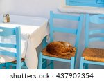 A Cat Sleeping On A Chair In...