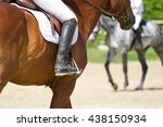 Dressage Horse Rides In The...