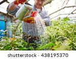 watering small trees | Shutterstock . vector #438195370