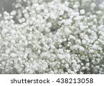 wedding flowers | Shutterstock . vector #438213058