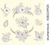 vector floral set. graphic... | Shutterstock .eps vector #438224920
