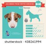 vector infographic of bull... | Shutterstock .eps vector #438261994